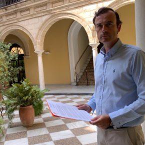 """Méndez (Cs): """"Pedimos al PSOE que no obstaculice la construcción de un centro de reparación de aviones en Jerez"""""""